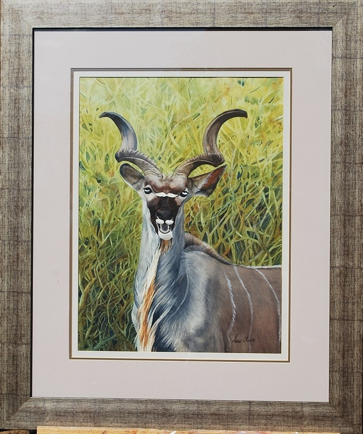 KuDu With A Laugh